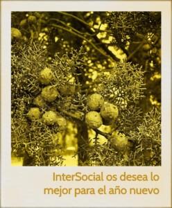 felicitación InterSocial